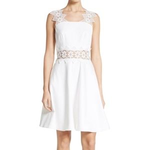 NEW Ted Baker Monaa Lace Trim A Line Dress